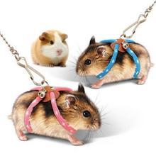 Petit Animal Hamster écureuil souris planeur laisse collier réglable souris souris écureuil gerbille Hamster marche planeur jouet