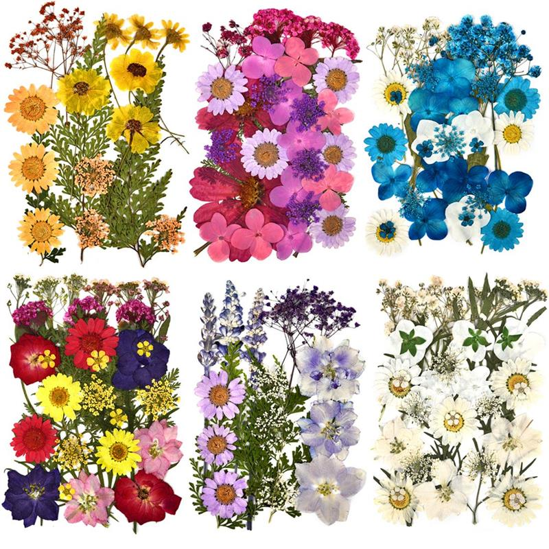 1 Pack Dried Flowers UV Resin Natural Flower Stickers Dry Beauty Decal For DIY Epoxy Resin Filling Jewelry Decoration