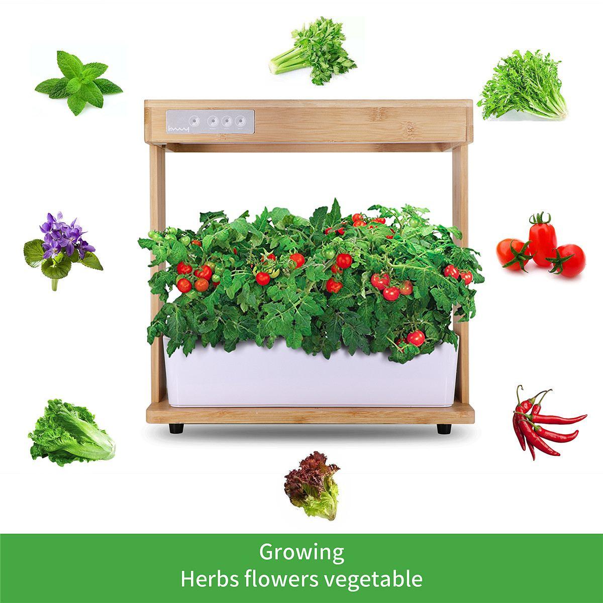 Caja de cultivo de flores para vivero, maceta automática absorbente de agua, maceta hidropónica inteligente, Equipo de cultivo sin tierra
