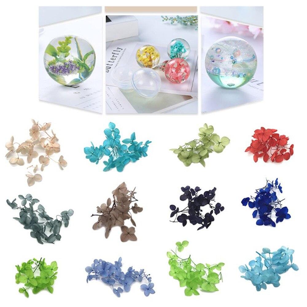 1 boîte multicolore résine fleur sèche fabrication de bijoux matériaux de remplissage cristal UV remplissage à la main fleur sèche Silicone moules bricolage artisanat