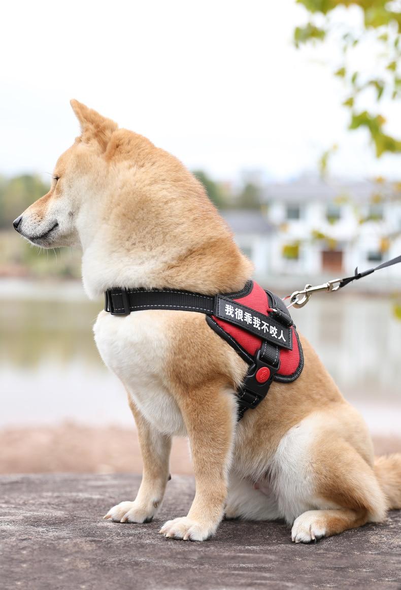 Gran Medio arnés tipo chaleco para perro Clip frontal personalizado Collar de perro Chihuahua, Pitbull arnés para perros mascotas accesorios nueva II50GQY