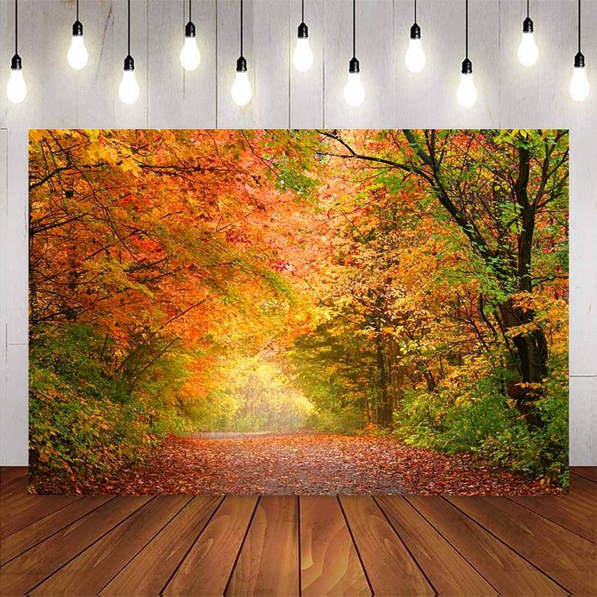 Fondo de bosque de otoño para fotografía de Hojas de arce de otoño, estudio fotográfico, hojas del bosque retrato de bebé, sesión fotográfica de boda