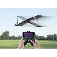 Perroquet Swing-Dron