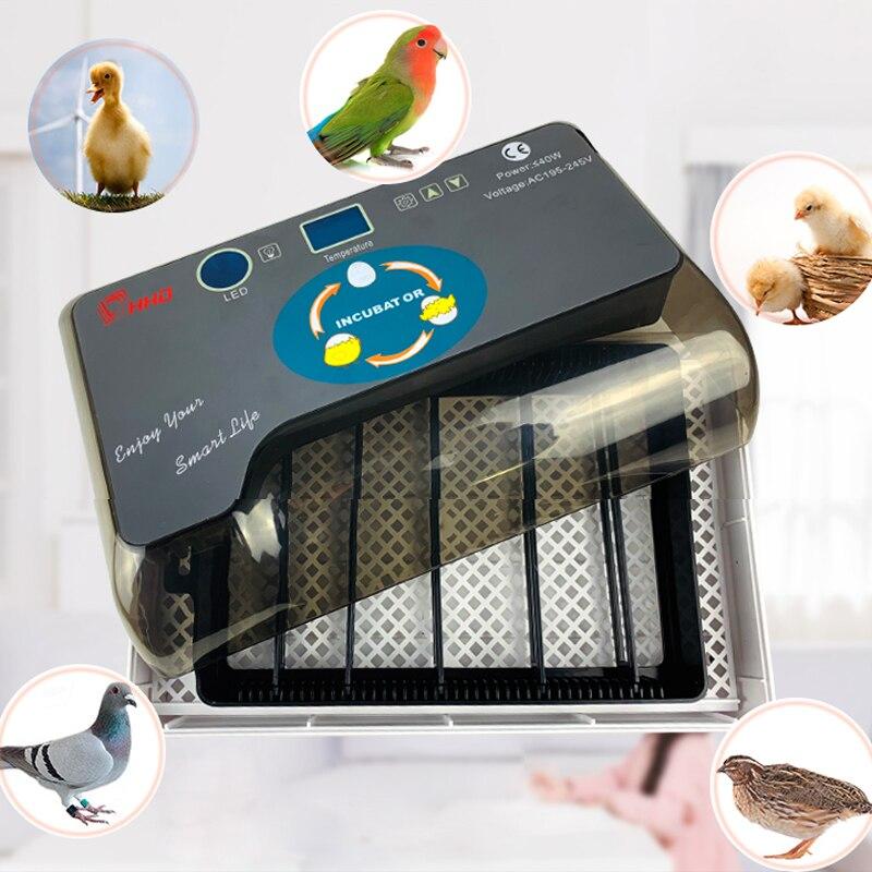 Egg Incubator Automatic Large Capacity Incuator Digital Temperature Control Brooder Chicken Incubator Quality Hatchery Machine