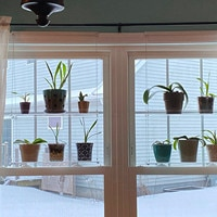 Shelf For Plants Window Bathroom Or Kitchen Window Plant Shelf Hanging Shelf Plant Shelves Plant Stand Decor Shelf Detachable