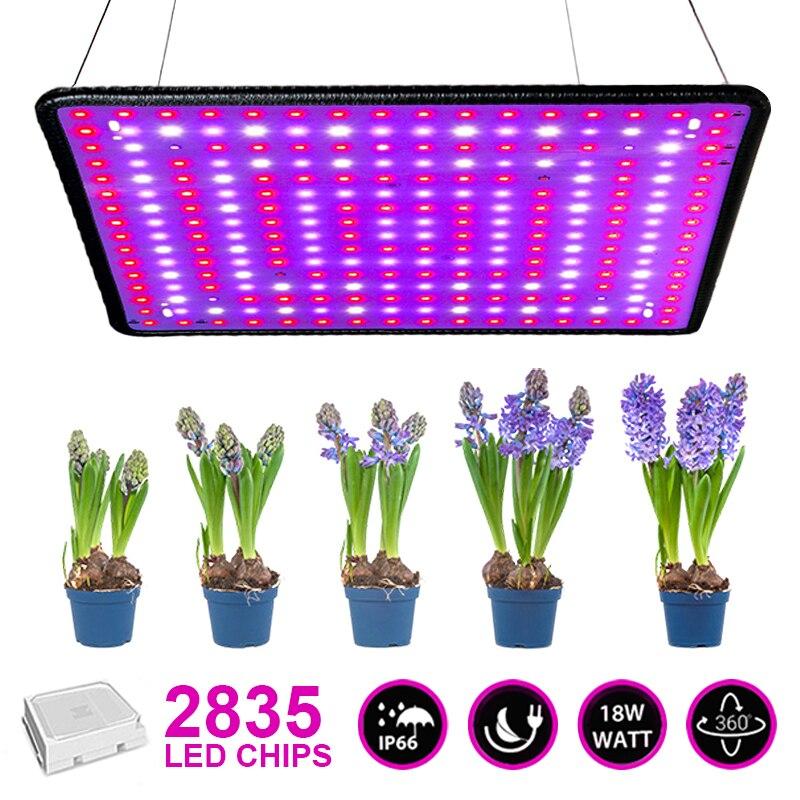 2000W Grow Light Hydroponic Kit Grow Light Plant Vegetables and Flowers Indoor LED Grow Light Illuminated Grow Tent 225 Plant Li
