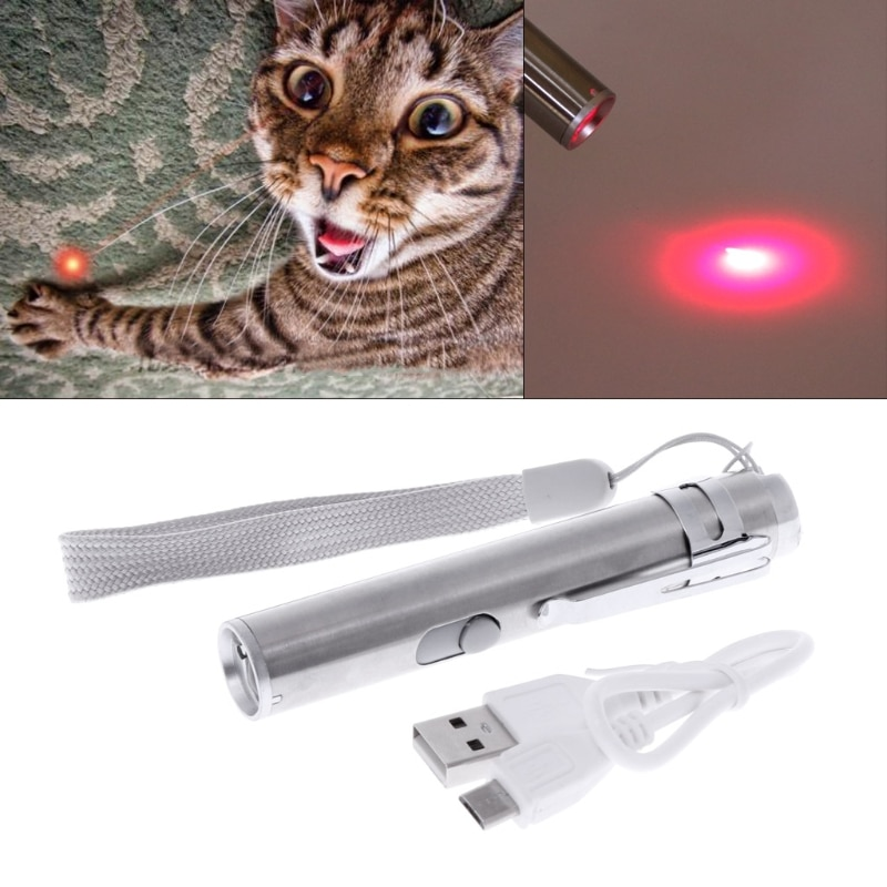 3 in 1 Cat LED Chase Toys Laser Pointer Pen USB Rechargeable Flashlight Pen