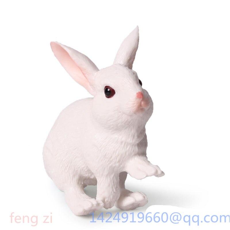 Simulação mini coelho bonito holandês requintado angora encantadoramente ingênuo japonês branco coelho pvc ação collectible modelo brinquedo g98