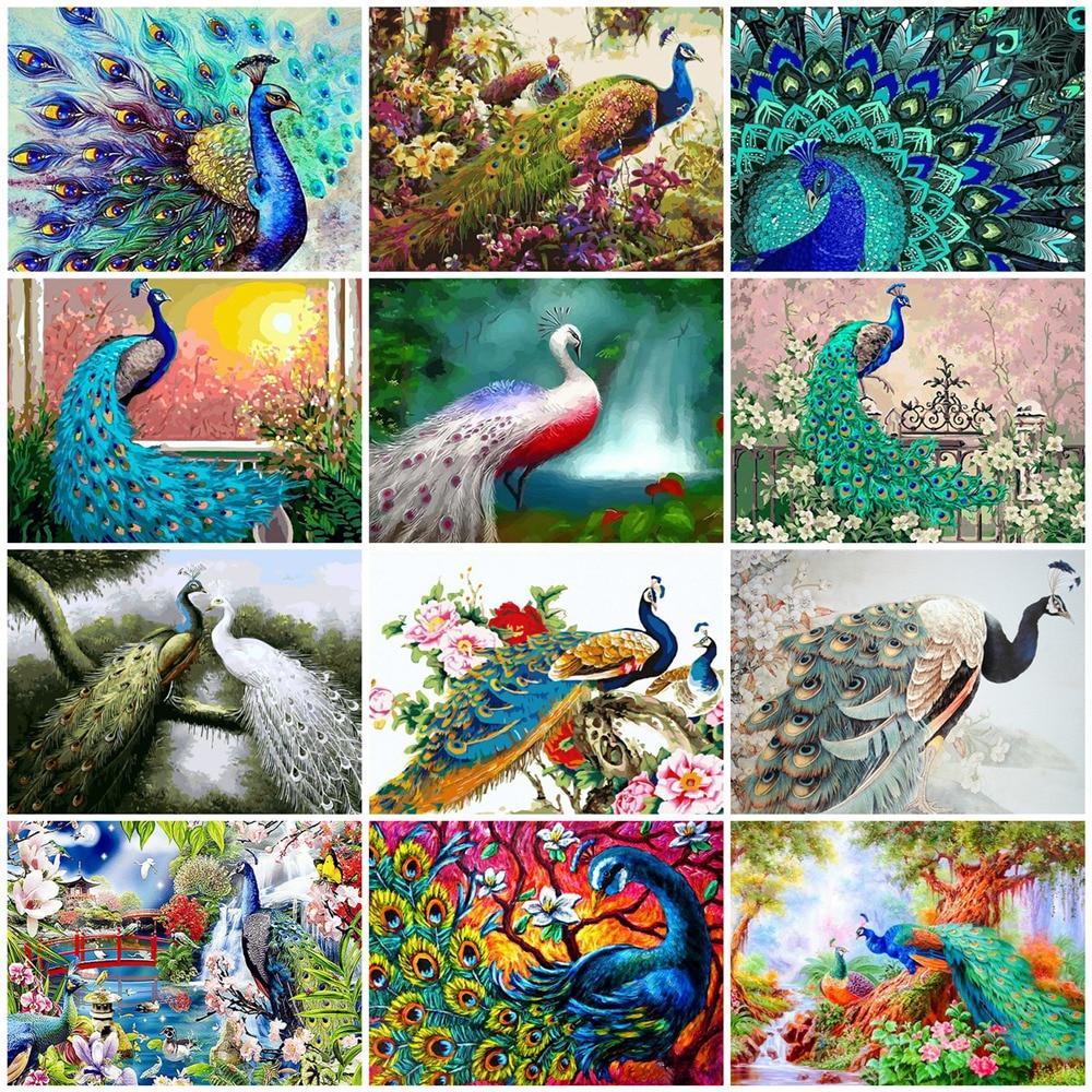 HUACAN pintura por número Pavo Real Animal pintado a mano cuadro por números arte de pared DIY para adultos regalo decoración del hogar