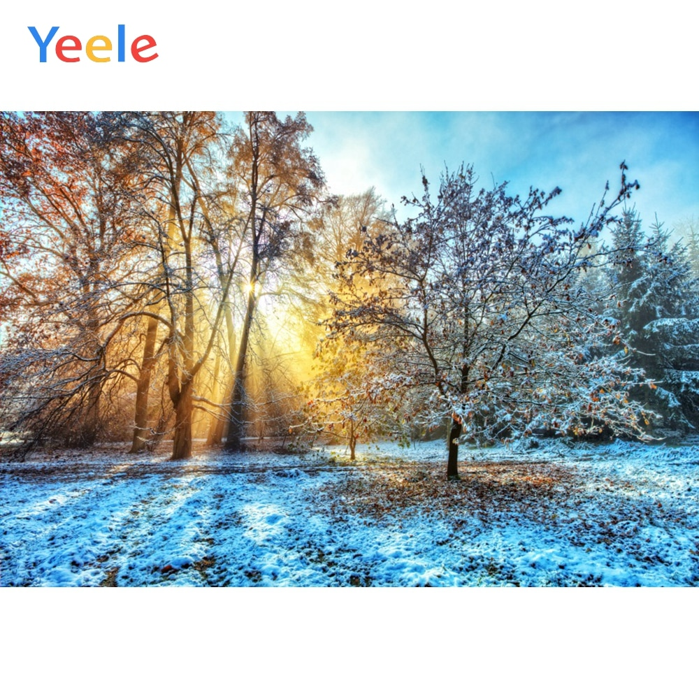 Yeele Winter Scenery Photography Backdrops  Snow Sunshine Forest Photographic Studio Photo Background Birthday Decorations Prop