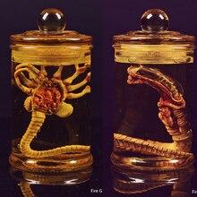Anime Alien Predator rysunek zabawki Alien larwa twarz Bug figurki zabawki Chestburster Facehugger zestaw świąteczny prezent