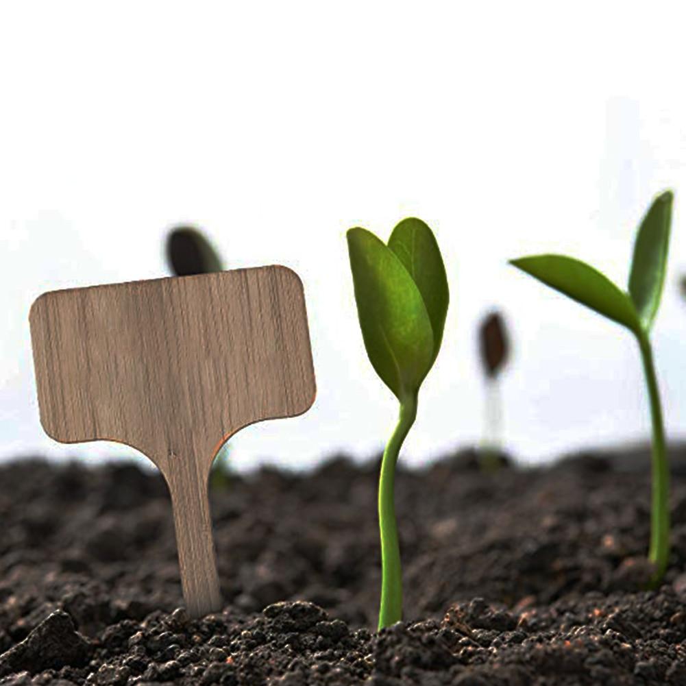 50 tablero pcs etiqueta granja marcadores de jardín paisaje Eco amigable multiuso vegetales, plantas etiquetas reutilizables bambú señal insertar tipo T
