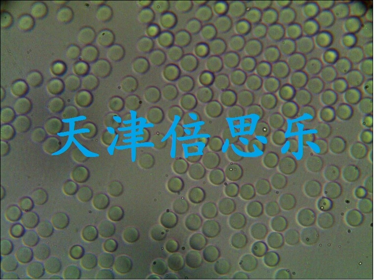 5 микрон Хроматографический силикагель/Сферический Хроматографический силикагель/упаковка 5 микрон/Хроматография/5 микрон Сферический