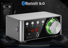 Mini TPA3116 Power Verstärker Bluetooth 5,0 Empfänger Stereo Hause Auto Audio Amp USB U-disk Musik Player