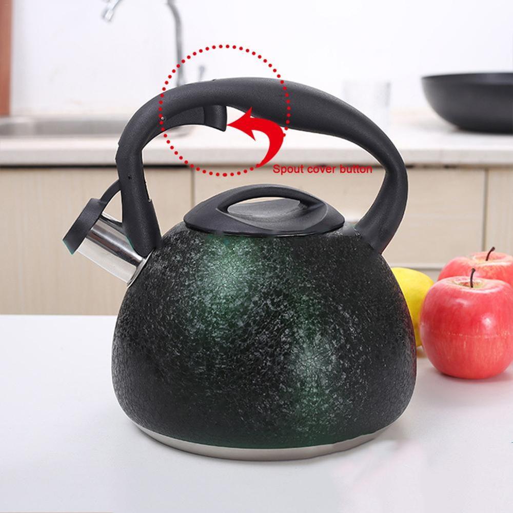 غلاية صفير من الفولاذ المقاوم للصدأ سعة 3 لتر ، غلاية سطح حبة الشاي مع مقبض مقاوم للحرارة ، زجاجة ماء ، موقد لمصادر الحرارة