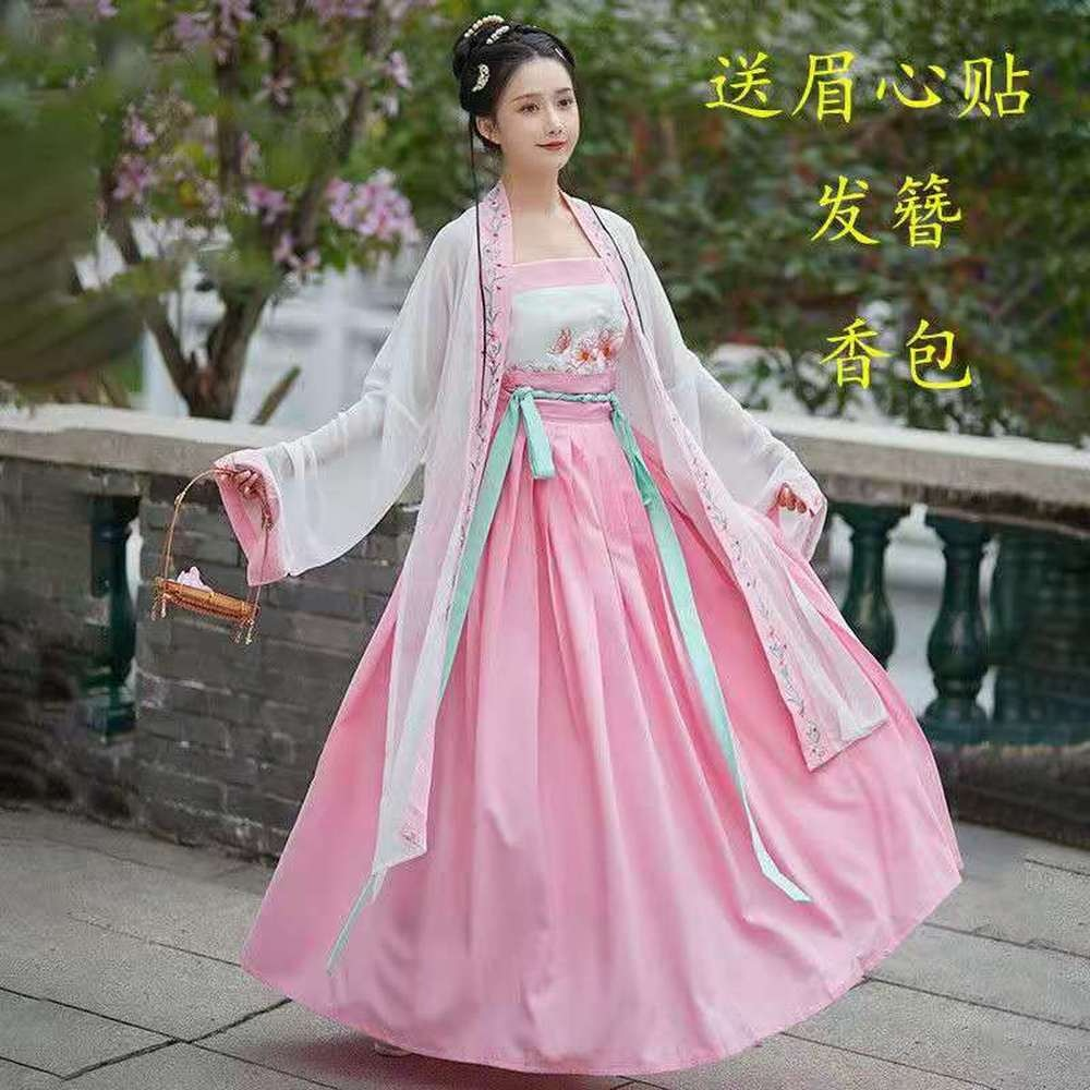 Song Dynasty Princess Hanfu Ancient Dance Costume Chinese Traditional Dress Elegant Tang Clothes EmbroideryWomen Stage Outfits