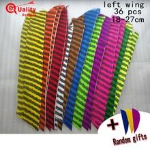 New 36pcs Full Length Turkey Feather  thin stripes Arrow Feather Cut archery Fletching Hunting Shooting Diy Arrow archery plumes