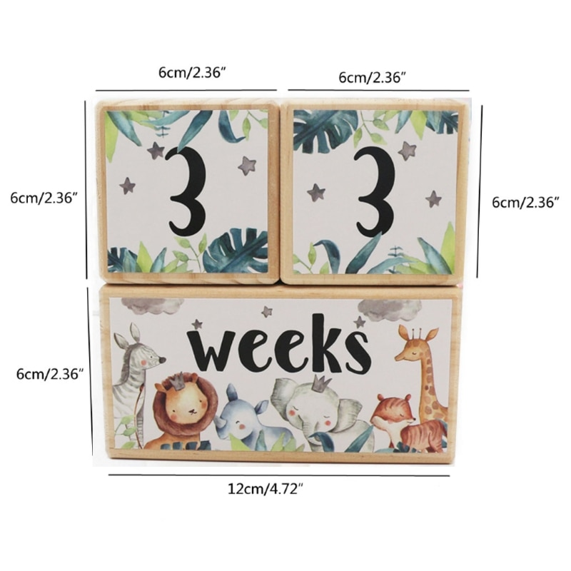 Baby Milestone Memorial Monthly Wooden Block Photography Photo Month Sticke
