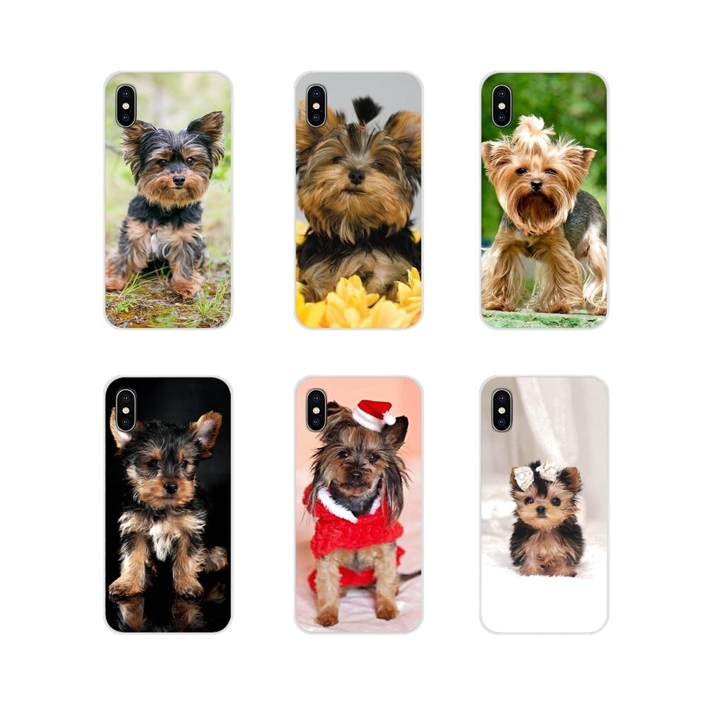 Para iPhone X de Apple XR XS 11Pro MAX 4S 5S 5C SE 6 6S 7 7 Plus ipod touch 5 6 yorkshire terrier perro cachorro TPU transparente de la cubierta de la piel