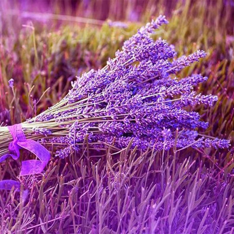 100% volle 5D Diy Daimond Malerei Kreuz-stich Lavendel Blume 3D Diamant Malerei Runde Strass Gemälde Stickerei