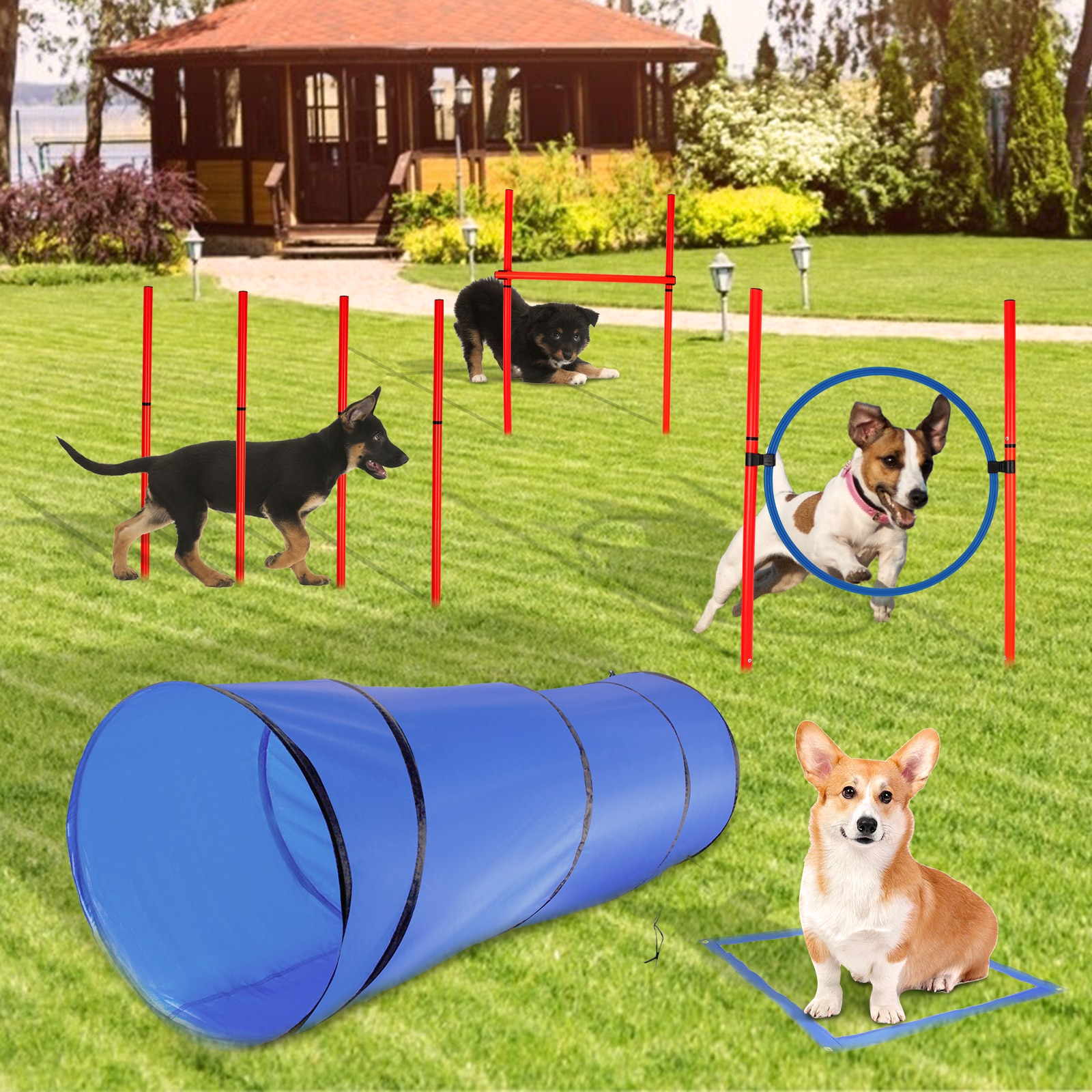 Dog Agility Training Tool Dog Training Toy Training Channel Agility Tunnel High Jump Pole Agility Jump Ring Set enlarge