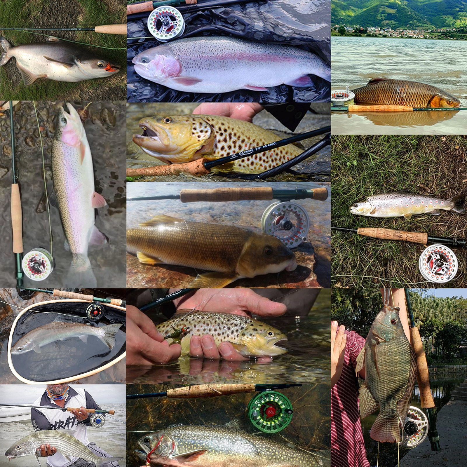 3-8WT Fly Fishing Combo 8'6''/9' Medium-fast Fly Rod Pre-spooled Fly Reel&Fly Line With Cordura Triangle Tube enlarge
