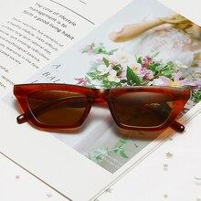 New Retro Cat Eye Sunglasses Men Women Brand Designer Sun Glasses for Male Female Stylish Eyewear Vi