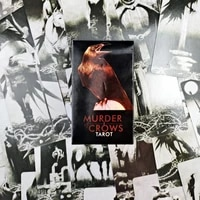 2021 hot sell murder of crows tarot cards 78cards tarot cards for divination personal use full english version tarot
