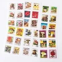 6 sheets mushroom gardens stamp design diy decorative stickers diary phone bottle decor