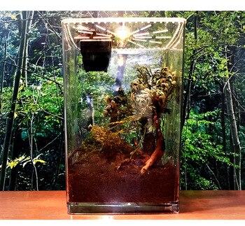 Transparent Reptile Box 14