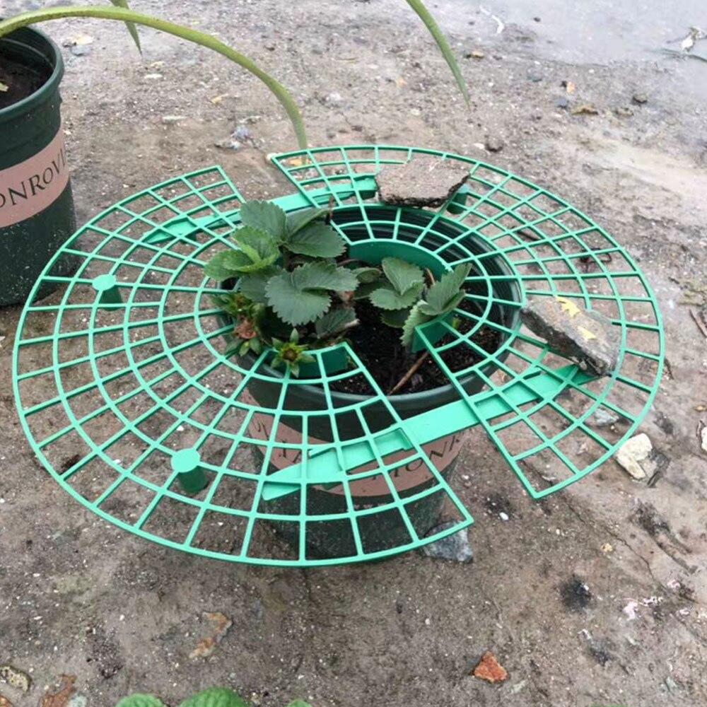 5 uds de soporte marco titular de plantas para balcón Rack fruta apoyo flor vid trepadora Pilar jardinería soporte