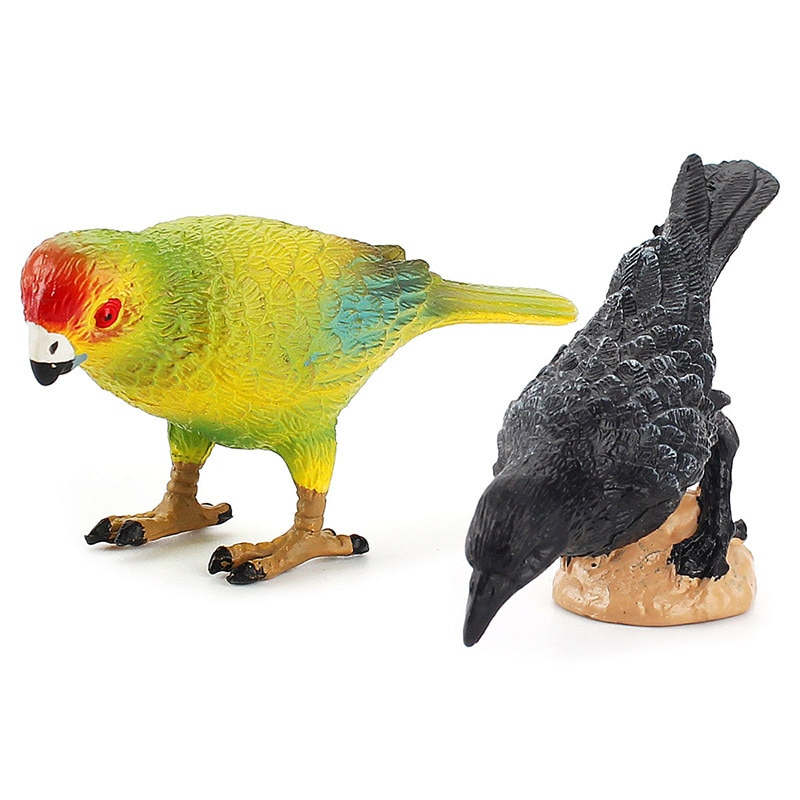 Bird Model Animal Model Solid Action Oriole Robin Figures Feather Educational Toys For Children Birthday Gift Simulation Toys