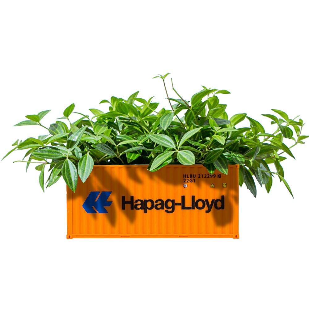 recipiente modelo caixa criativo suculentas planta pote de armazenamento jardim vaso