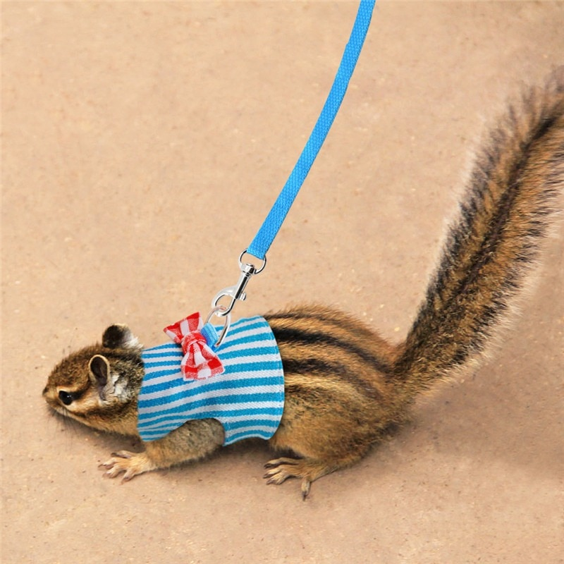 Pequeño conejo para mascotas chaleco arnés y correa para hurón Guinea cerdo conejo Hamster cachorro Bowknot arnés de correa pectoral, suministros para mascotas