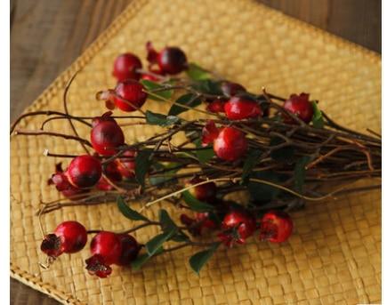 Кантри домашний декор бонсай цветок саженцы искусственный цветок сушеный цветок ремесло graines a planter Декор