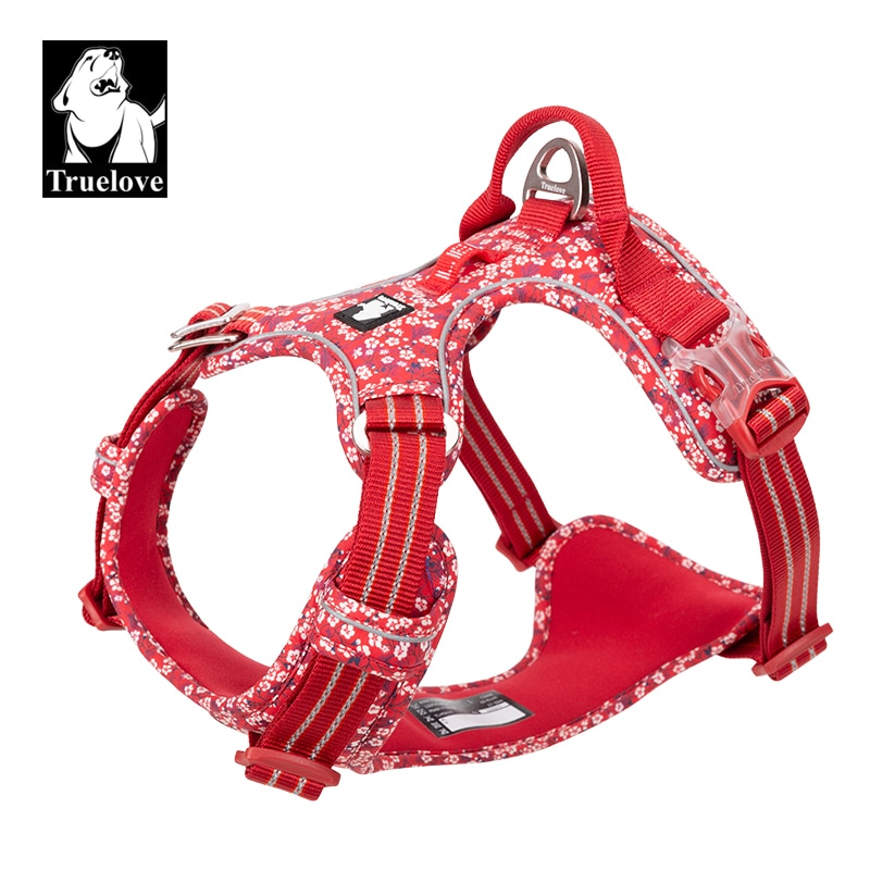 Dog Vest Harness Nylon  Dog Harness and Leash Set  Dog Leash  Dogs Accessoires  Pet Products for Dog  Quick Release  Reflective