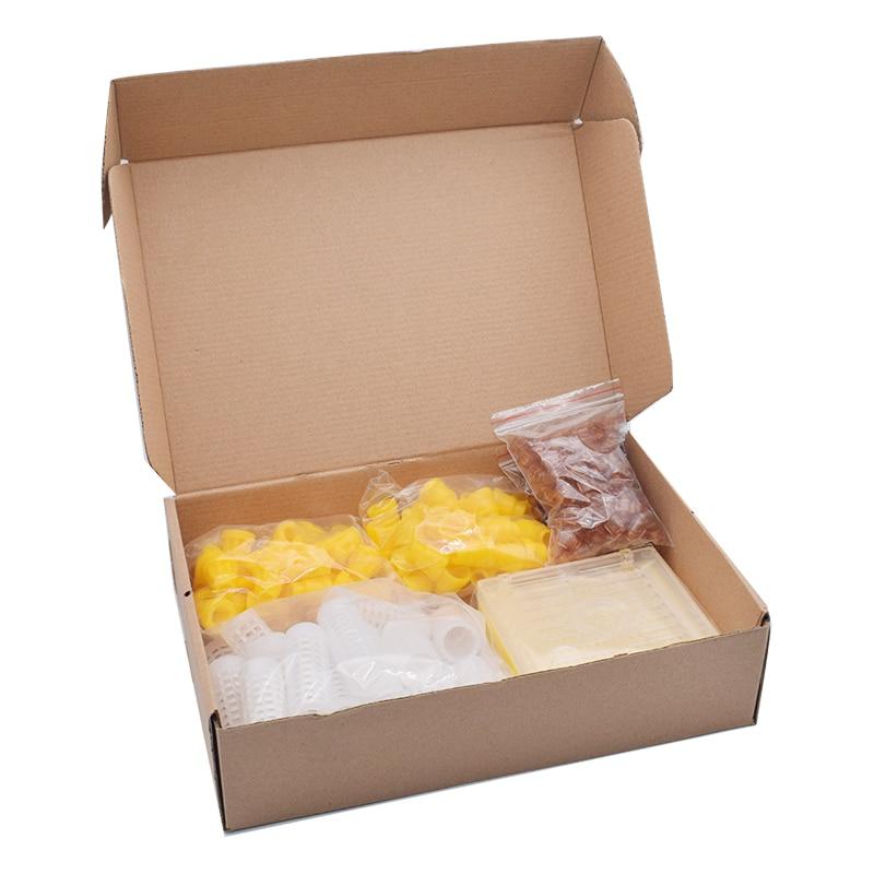 Sistema de cría de Reina Nicot Jenter Kit de cría de Reina Jenter Kit completo de cría de abeja