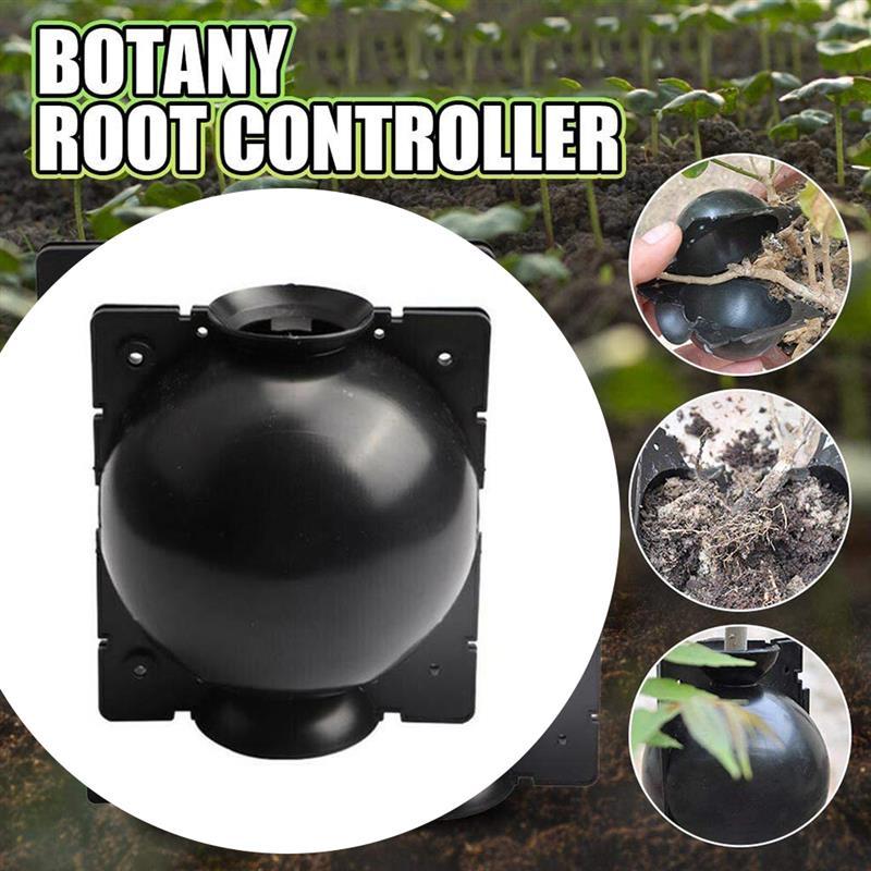 Planta de enraizamento bola de ar estratificação plantas corte crescer caixa de reprodução de bola para planta de jardim de alta pressão de propagação de mudas
