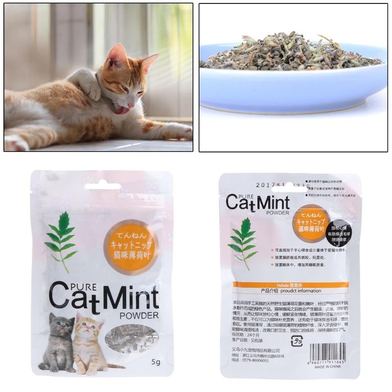 Gatos, menta Natural orgánica, premios Premium, Catnip, mentol, gatito, sabor divertido, sueño