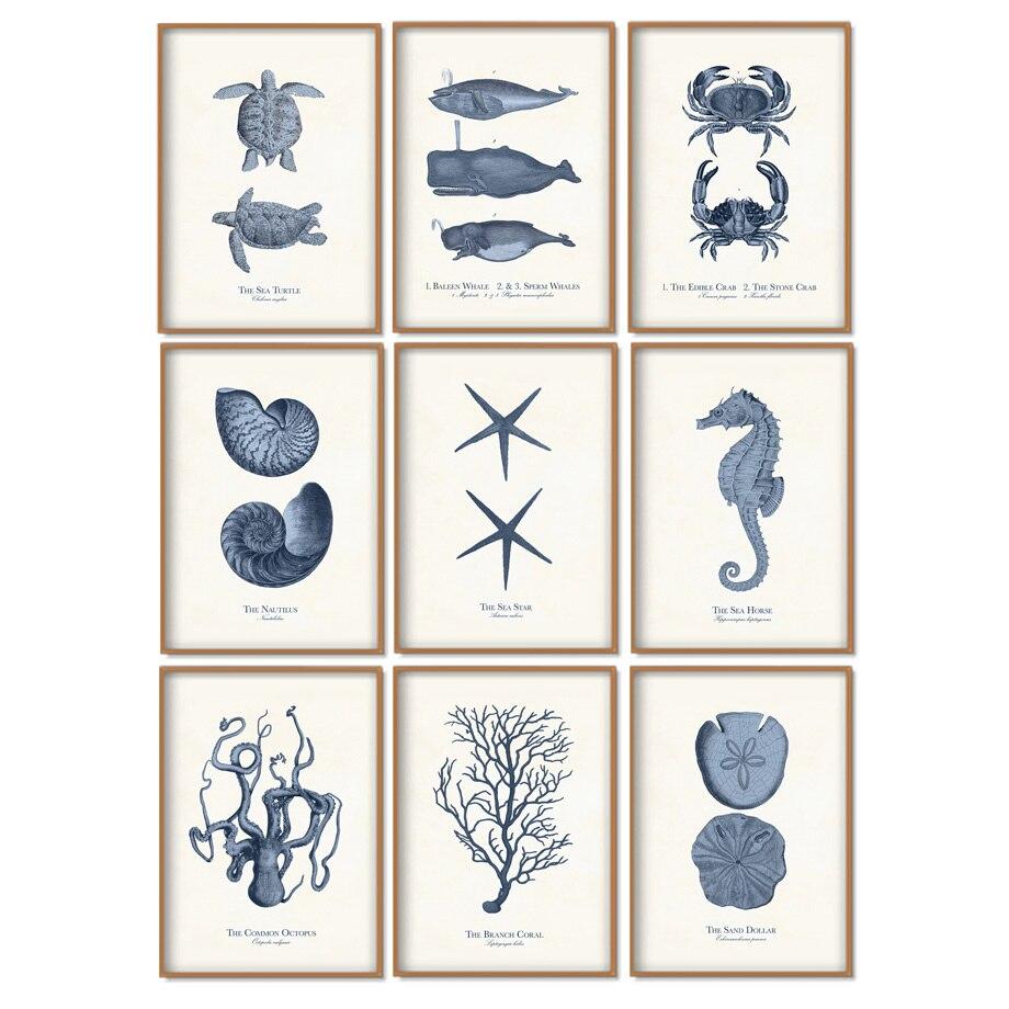 Pez fósil tortuga Caracol estrella para árbol Vintage cuadro sobre lienzo para pared carteles nórdicos y la impresión de pared para decoración para sala de estar