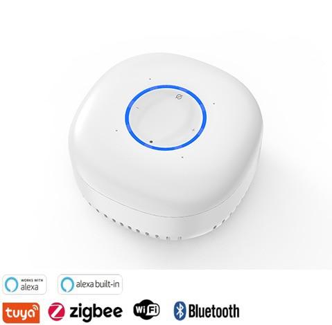 Best smart wireless alexa speaker AVS 2021 enlarge