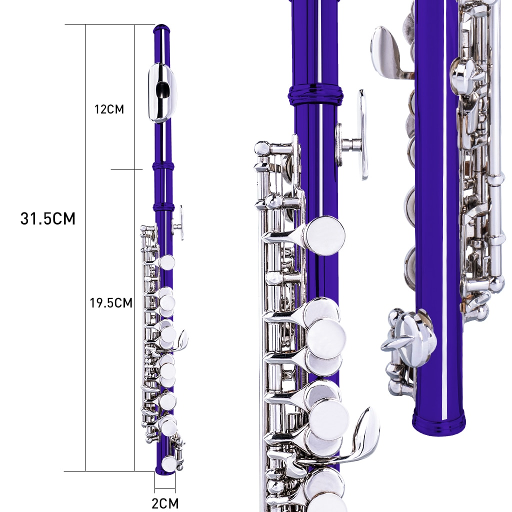 NAOMI Excellent Nickel Plated C Key Piccolo Dark Blue Color W/ Case Cleaning Rod And Cloth And Gloves Cupronickel Piccolo Set enlarge