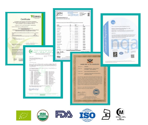 USDA and EC Certified Organic Soy Lecithin