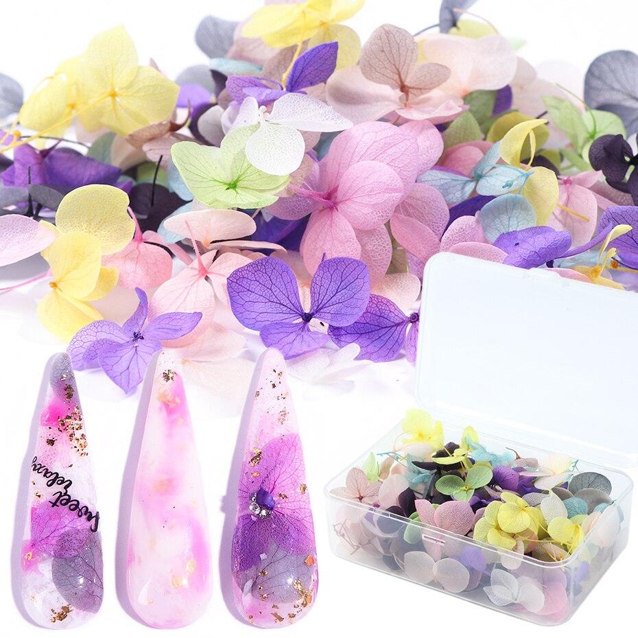 100 stücke Fasten Getrocknete Blumen 3D Nail art Dekorationen Natürliche Floral Aufkleber Charme Nail Designs UV Gel Polieren Zubehör BE1505