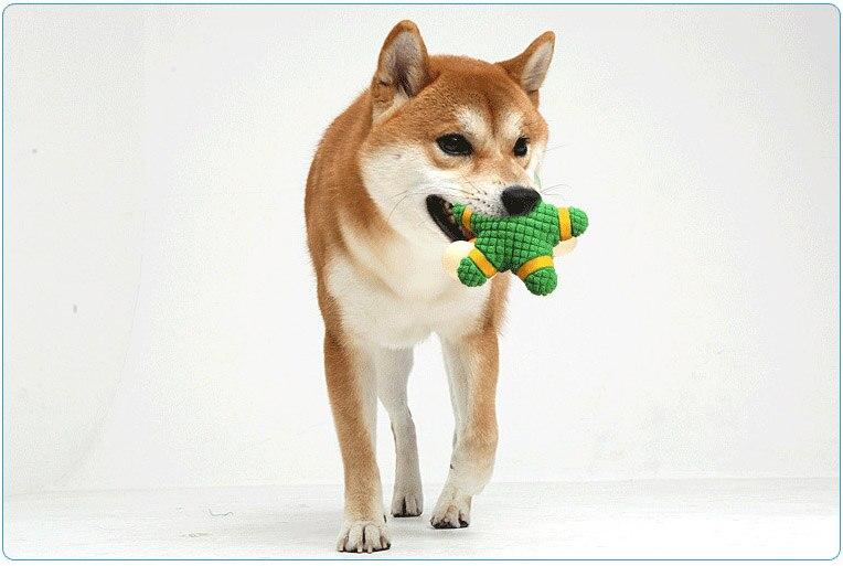 Игрушка голоса, латексная Морская звезда, интерактивные моляры, кусающая собака, игрушка для собак, игрушка для кошек, интерактивные товары ...