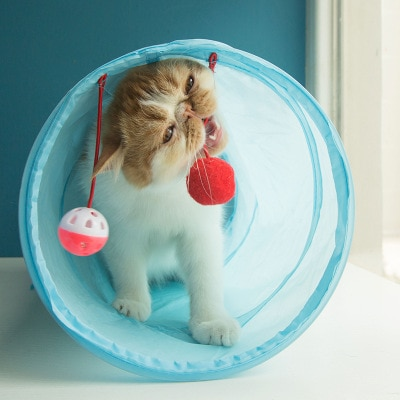 Túnel plegable para mascotas de tubo de juego perfecto párr gatos... cachorros......