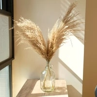 wedding pampas grass decor feather flowers bunch natural dried flower pampas plants easter christmas decorations home decor