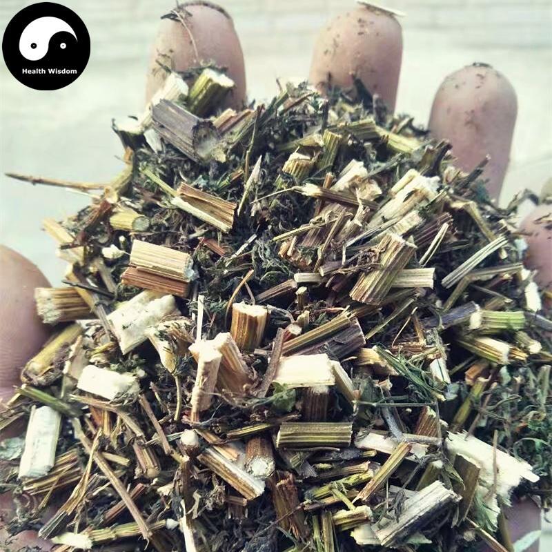 Hierba de Artemisia Annua de Qing Hao, Herba Artemisia, ajenjo dulce