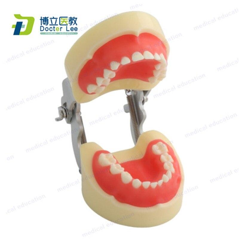 Съемные первичные розовые мягкие зубы Gingiva для стоматологической практики и учебы с бесплатной отверткой и винтом
