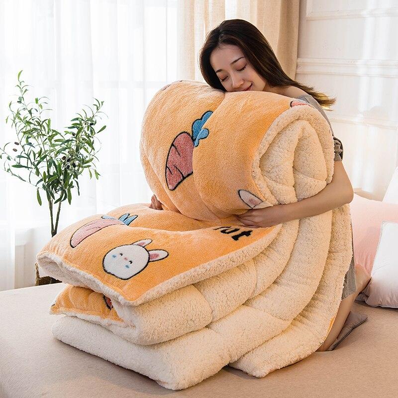 Winter Blanket 5 Kg Double-sided Velvet Quilt Thicken Warm Autumn Plush Comforter Cute Style Spring Quilt Super Warm Lamb Quilt